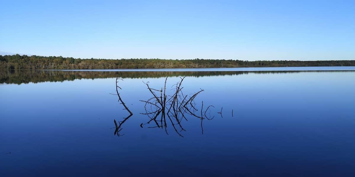 Lac Aureilhan-Mimizan